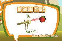 dragonfruit
