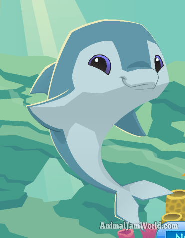 Image of: Atlantic Ocean Dolphin Animal Jam World List Of All Ocean Animals In Animal Jam