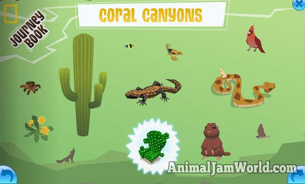 coralcanyonsbook