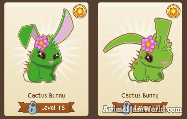 cactusbunny