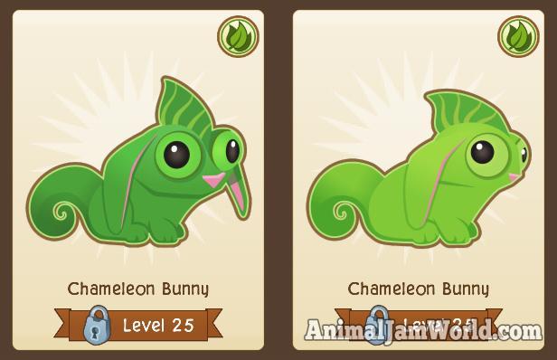 chameleonbunny