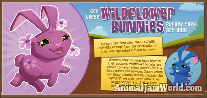 wildflower-bunny