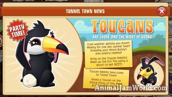 toucan-bunny-news