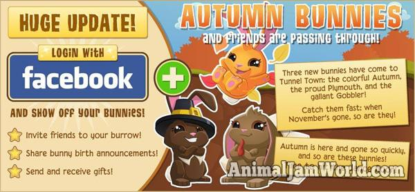 tunnel-town-autumn-bunnies-2
