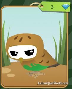 diamond-shop-pet-owl
