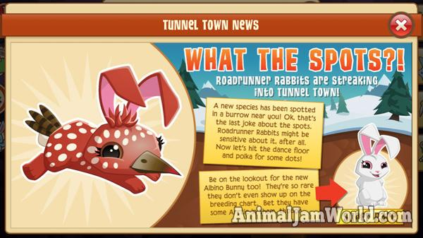 tunnel-town-roadrunner-rabbit-1
