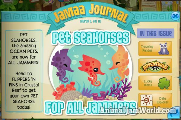 pet-seahorses