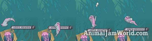animal-jam-otter-codes-3
