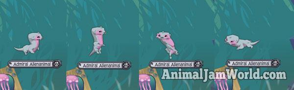 animal-jam-otter-codes-4