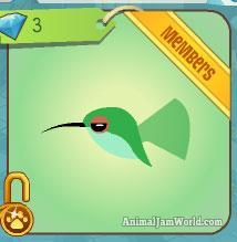 animal-jam-pet-hummingbird-codes-1