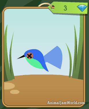 animal-jam-pet-hummingbird-codes-2