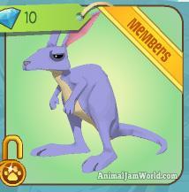 animal-jam-kangaroo-codes