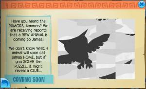 Owl Rumor
